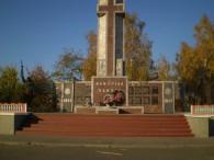 Бирлівка- центр сільської ради розташований за 2 км від районного центру м. Бершадь. Найближча залізнична станція- Бершадь за 6 км. Площа населеного пункту – 440,8 га. Населення – 2230 осіб....