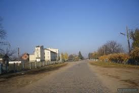 Кошаринці центральна вулиця села